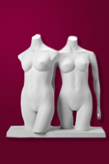 XL Torsos Female